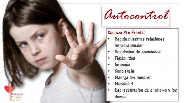 cerebroinfantil-e1390947766685 Con manual de instrucciones, cerebro infantil