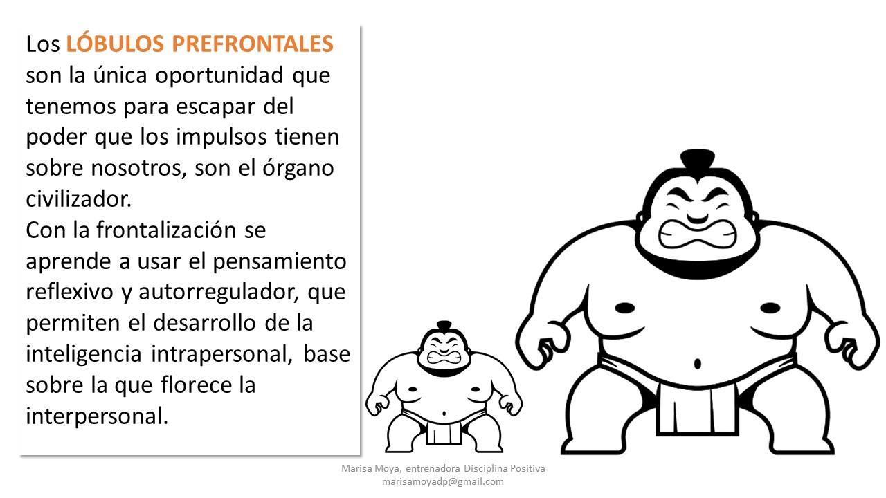Diapositiva27 Disciplina Positiva y Plataforma de Profesionales de Tratamiento Familiar de Andalucía